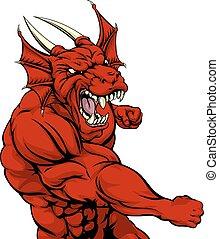 draak, rood, vecht, mascotte