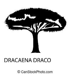 Dracaena draco icon, simple style - Dracaena draco icon....