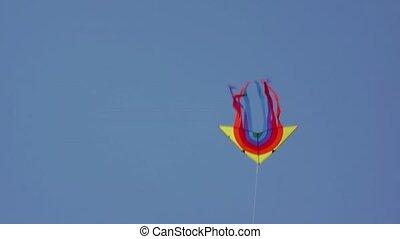 drachen- fliegen, in, der, himmelsgewölbe