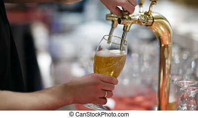Draft beer pouring - Man pouring full glass of draft beer,...