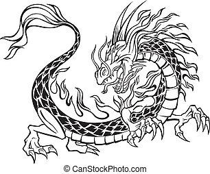 dragão, ilustração, vetorial