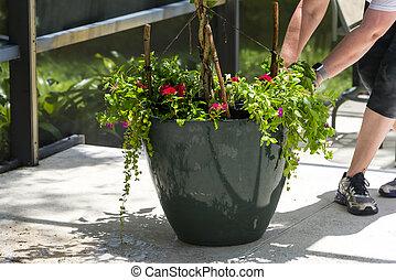 Dragging Flower Garden Pot Preparation
