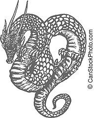 drago, orientale, disegno, inchiostro
