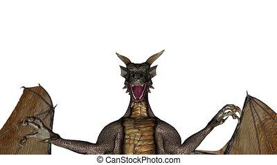 dragon   - flying dragon