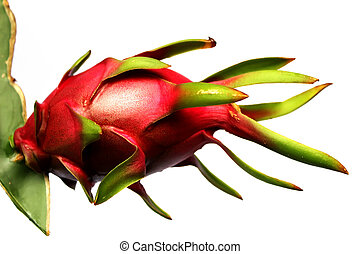 dragon fruit on white background