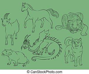 dragon, rat, goat, tiger, horse and dog