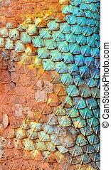 Dragon skin pattern texture. - Dragon skin pattern texture...