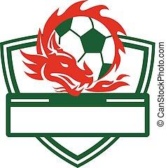 dragon-soccer-ball-crest