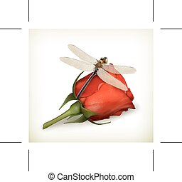 Dragonfly and red rose