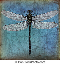 Illustration of a Dragonfly on a grunge paper background