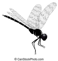 Dragonfly - Vector dragonfly represented in the form of a...