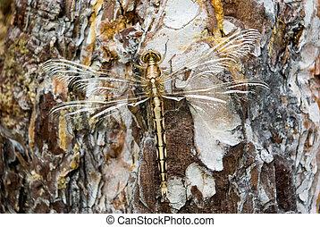 Dragonfly full-length sitting on the tree bark