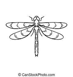 Dragonfly icon in outline style isolated on white...