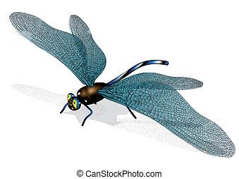 dragonfly isolated on white background. 10 EPS