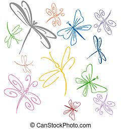 dragonfly, komplet