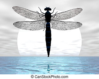 Dragonfly Moon - Dragonfly flying before the moon