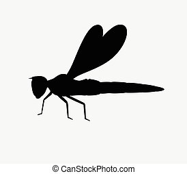 Dragonfly Silhouette Vector Insect