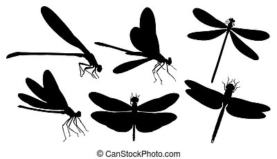 Dragonfly silhouettes.