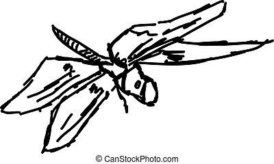 Dragonfly sketch, illustration, vector on white background.