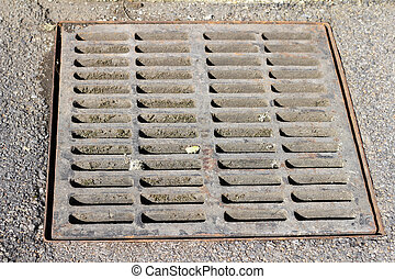Sewer grate that drains water from a parking lot.