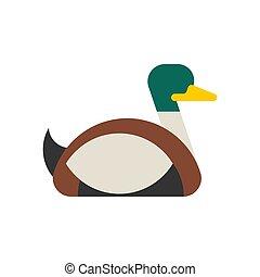 Drake duck male isolated. waterfowl bird Vector illustration