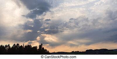 dramático, colorido, nubes, ocaso, árboles., grande
