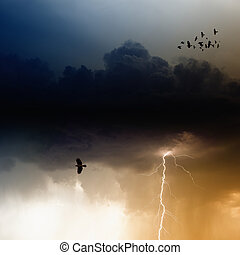 Dramatic nature background, bright lightning, flock of flying ravens, crows in dark sky