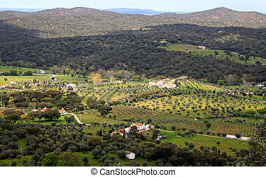 Dramatic hillside at Evoramonte
