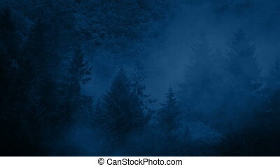 Dramatic Misty Wilderness Forest At Night - Heavy mist moves...