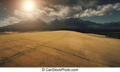 Dramatic mountain range and yellow wheat field