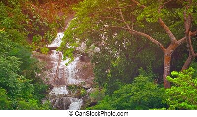 Dramatic Natural Waterfall in a Tropical Wilderness
