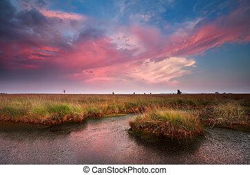 dramatic pink sunset over bog, Fochteloerveen, Netherlands