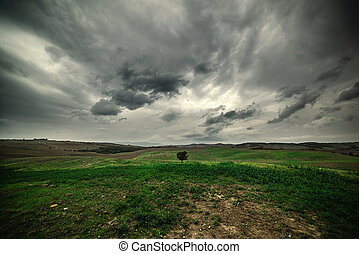 Dramatic sky over a green field in Tuscany