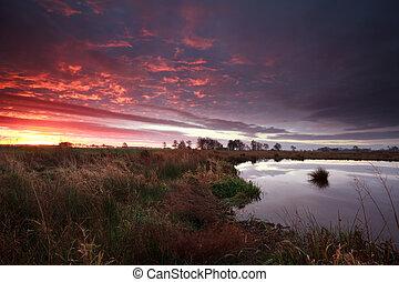 dramatic sunrise over swamp, Onlanden, Drenthe, Netherlands