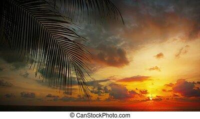 Dramatic Sunset over a Tropical Beach