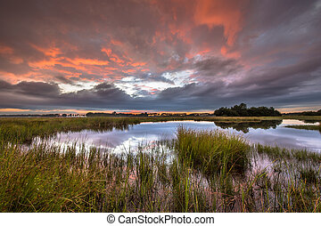 Dramatic sunset over marshland in natural landscape