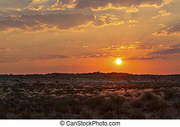 Dramatic sunset over the grassy plains of the Kalahari