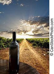 Wine bottle against a vineyard