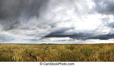 dramatique, prairie, paysage