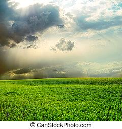 dramatischer himmel, aus, grünes gras, feld