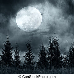 drammatico, albero, cielo nuvoloso, magia, sotto, paesaggio, foresta, pino