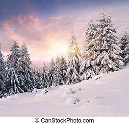 drammatico, inverno, alba, montagne