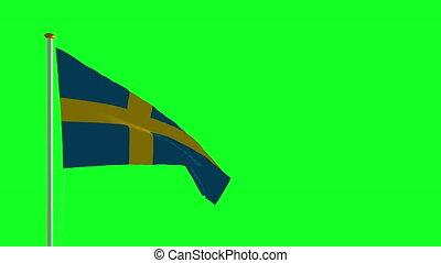 drapeau, écran, vert, suède