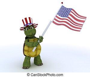 drapeau, américain, tortue