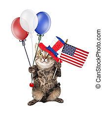 drapeau, ballons, quatrième juillet, chat