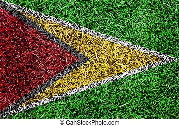 drapeau, guyane, texture, couleur d'arrière-plan, bissau, herbe