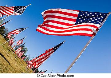 drapeau, jour, américain, honneur, vétérans, exposer