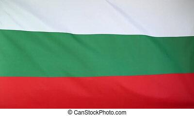 drapeau national, bulgarie