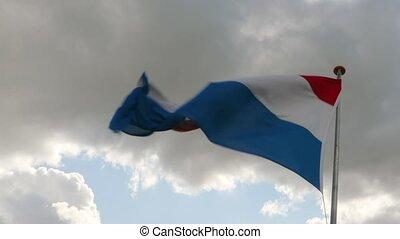 drapeau ondulant, hollandais