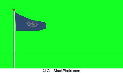 drapeau, onu, vert, écran